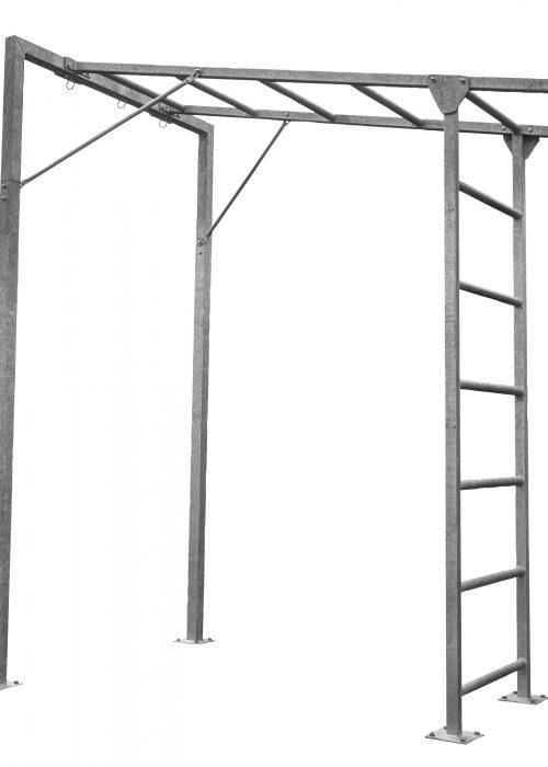 Abilica CageTrainer