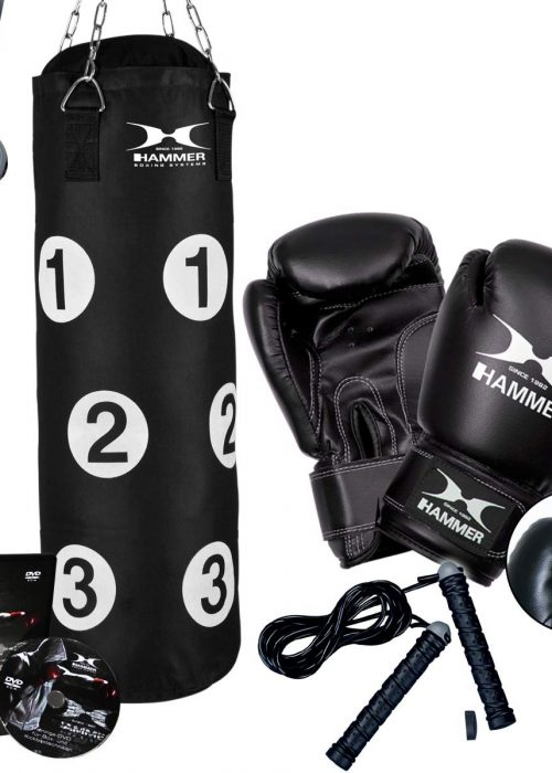 Box-Set Sparring Professional